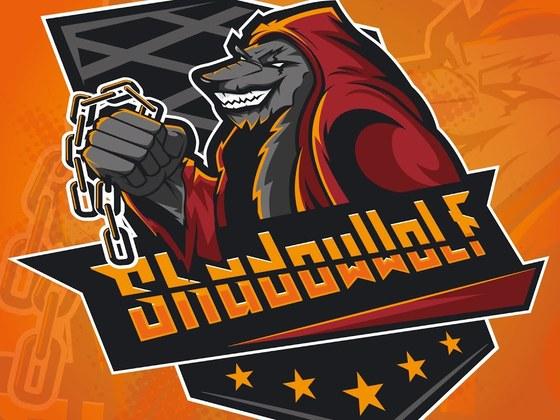 Designed the ShadowWolf logo
