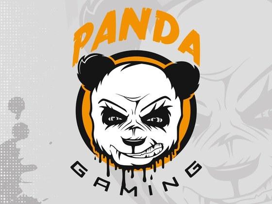 Created the Panda Gaming logo ( eSports )