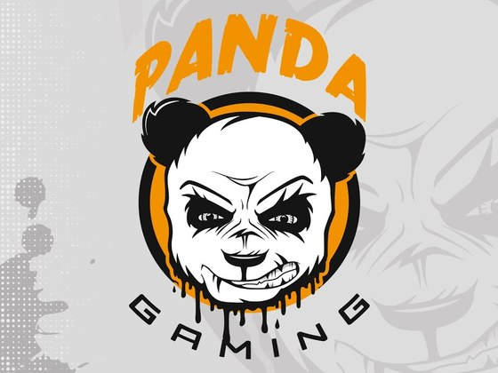 Created the Panda Gaming logo ( eSports )